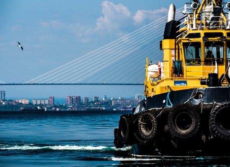 Закон о Свободном порте Владивосток необходимо совершенствовать.