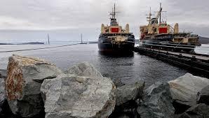 Новые резиденты свободного порта Владивосток