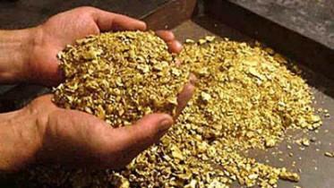Резиденты свободного порта Владивосток займутся золотодобычей