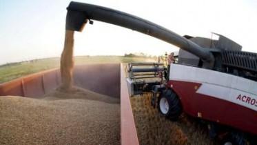 Мы на первом месте по экспорту пшеницы