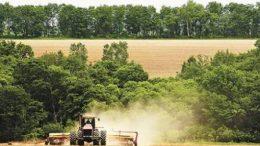 Дальневосточные гектары успешно осваиваются