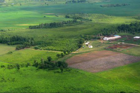 Поселение Дальневосточное на ДВ-гектарах